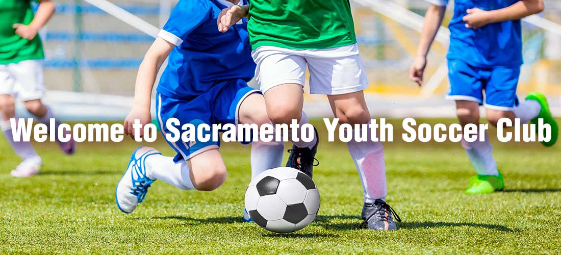 Not adult soccer sacramento consider, that